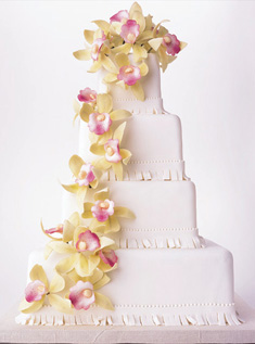 Wedding Cake Gallery from weddings.theknot.com