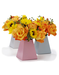 Blume Box