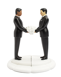 Interchangeable Cake Topper - Groom/Groom
